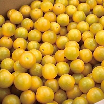 特質性のあるアートテン極うまミニトマト2kg箱 (5箱まで送料一律)の画像2