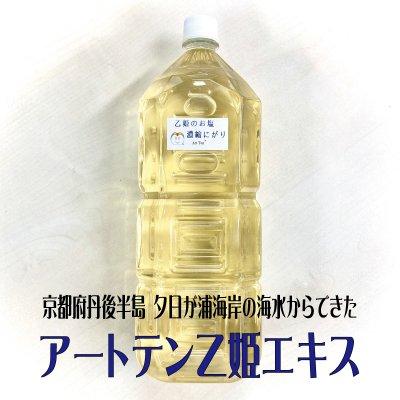 アートテン乙姫エキス 2L