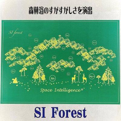 アートテン SI Forest 〜2枚セット〜 【A3サイズ】