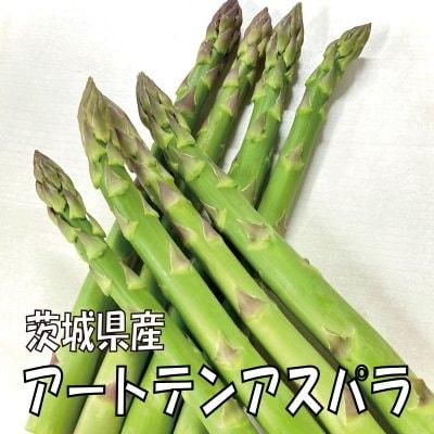 【夏採り!!】アートテングリーンアスパラ1.4kg 【送料無料】