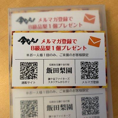 [飯田梨園様専用]名刺型チラシ作成チケット300枚