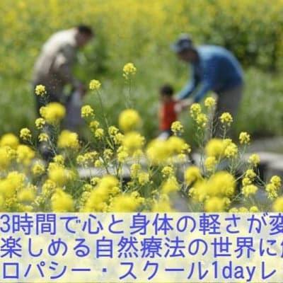【8月6日(月)開催】ナチュロパシースクール1dayスクール体験チケット