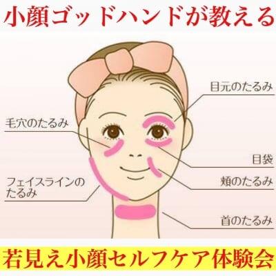 2月14日(金)@新宿 簡単小顔革命!小顔のプロが教える1日1分でシミ・たるみ・ほうれい線を消して小顔になれる方法がわかる秘密のお手入れ体験会