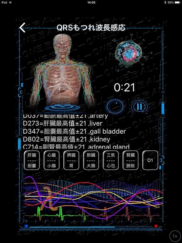 【現地払い】量子波動器の体内調整(全身ツボ押し)15分個別体験・脅威の水素入り珈琲付 江の島/腰越|量子波動分析器による全身調整のイメージその3