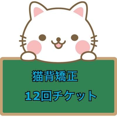猫背矯正 12回券 イベント価格