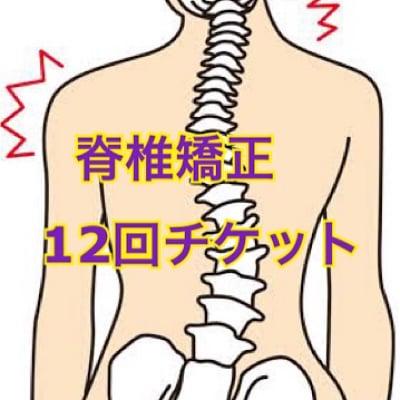 脊椎矯正 12回券 イベント価格