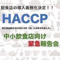 よくわかる 飲食店『HACCP導入義務化』決定 緊急対策セミナー
