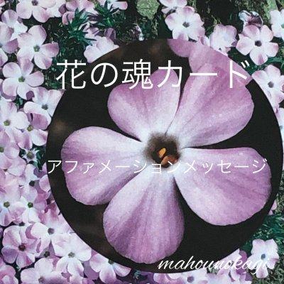 花の魂カード アファメーションメッセージ