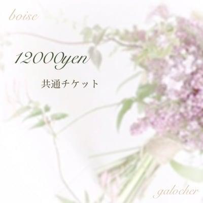 12000円 共通チケット  boiseボワゼ&galocherガロシェ