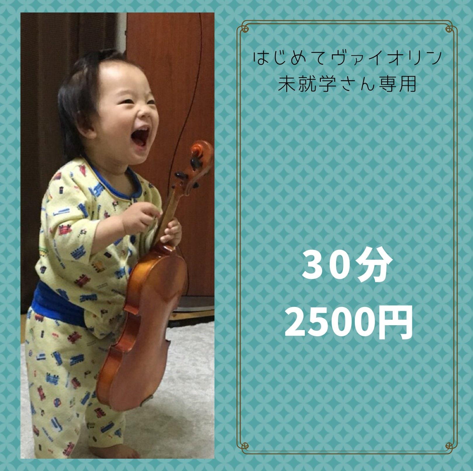30分未就学児/初心者こどもバイオリンレッスンのイメージその2