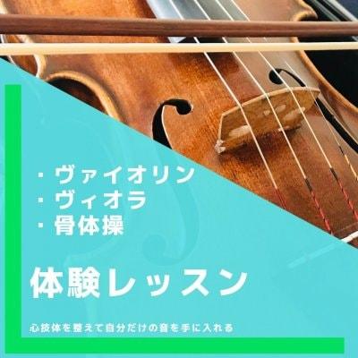 体験用|30分|バイオリン・ビオラレッスン