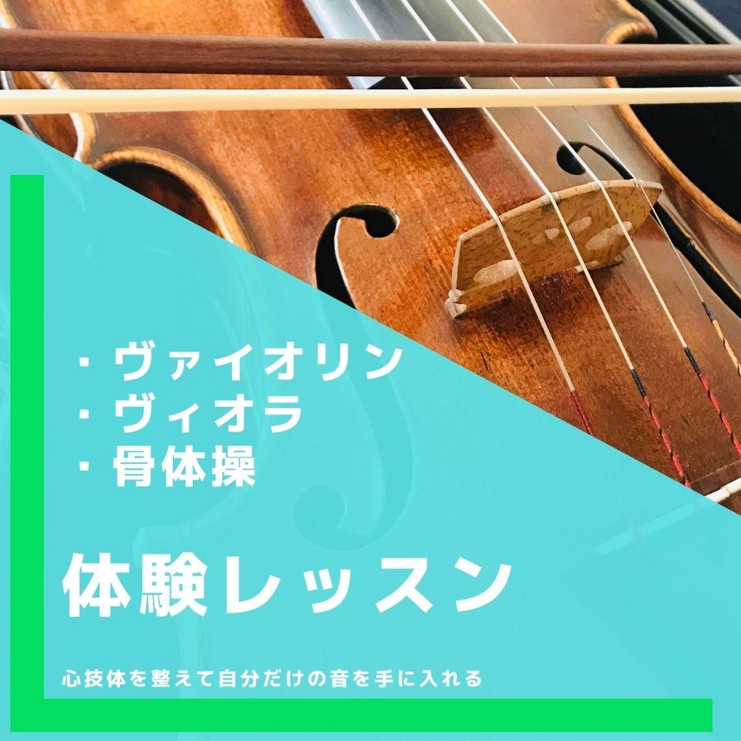 体験用 30分 バイオリン・ビオラレッスンのイメージその1