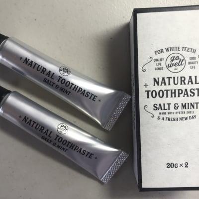 20gx2本入り 合成界面活性剤を使ってない安心安全な歯磨き ナチュラルトゥースペースト Go Well ソルト&ミント