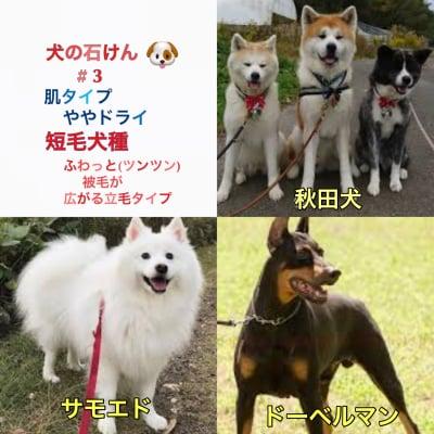 送料無料 秋の犬石けん ハーフサイズ#3 全犬種 【やや乾燥肌】特に日本犬、短毛・立毛犬