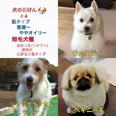 送料無料 秋の犬石けん ハーフサイズ#4 全犬種【普通〜ややオイリー肌】特に日本犬、短毛・立毛犬