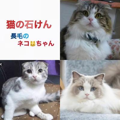 送料無料 猫の石けん 長毛種用 フルサイズ