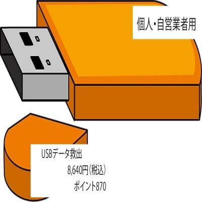 USBメモリ データ救出(個人・自営業者用)