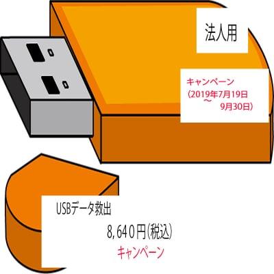 キャンペーン USBメモリ データ救出(法人用)