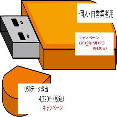 キャンペーン USBメモリ データ救出(個人・自営業者用)
