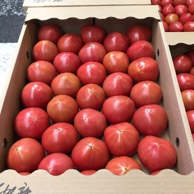 高崎様専用トマト販売ウェブチケット🎫