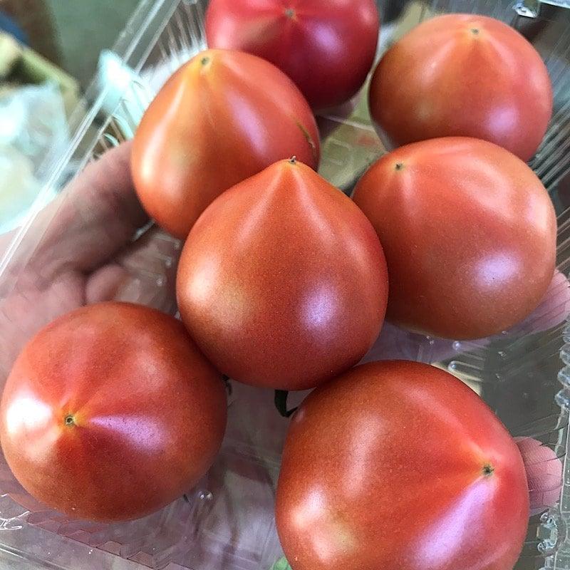【高糖度・高ポイント!】【店頭・現地払い限定】佐賀県産サンロードトマトのイメージその2
