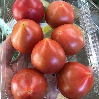 【高糖度・高ポイント!】【店頭・現地払い限定】佐賀県産サンロードトマト