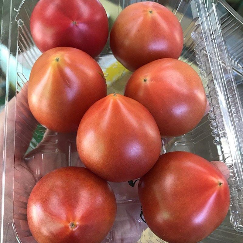 【高糖度・高ポイント!】【店頭・現地払い限定】佐賀県産サンロードトマトのイメージその1