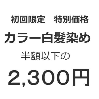 初回限定 白髪染め特別価格 2,300円【店頭支払い専用】