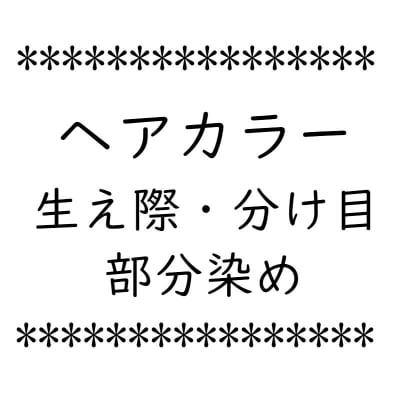 ヘアカラー 部分カラー 生え際分け目【店頭払い専用】