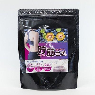 【活性炭入りプロテイン|270g|ブルーベリー味】貯筋生活