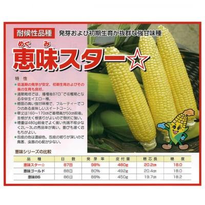 【送料無料】約2kg!!鳥取大山の麓で育った生でも食べれるトウモロコシ