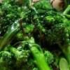 【送料無料】訳あり品(虫舐め)ブロッコリー2kg(袋詰め) 鳥取大山の麓で育ったブロッコリー