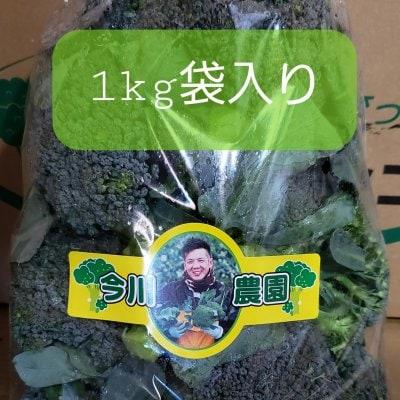 【送料無料】訳あり品(虫舐め)ブロッコリー1kg(袋詰め) 鳥取大山の麓で...