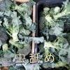 【送料無料】訳あり(虫舐め)ブロッコリー5kg バラ箱入り 鳥取大山の麓で育ったブロッコリー