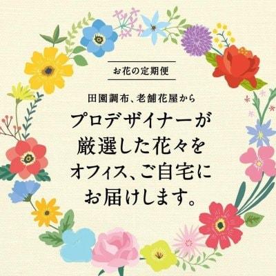 お花の定期便/3000円【送料込】