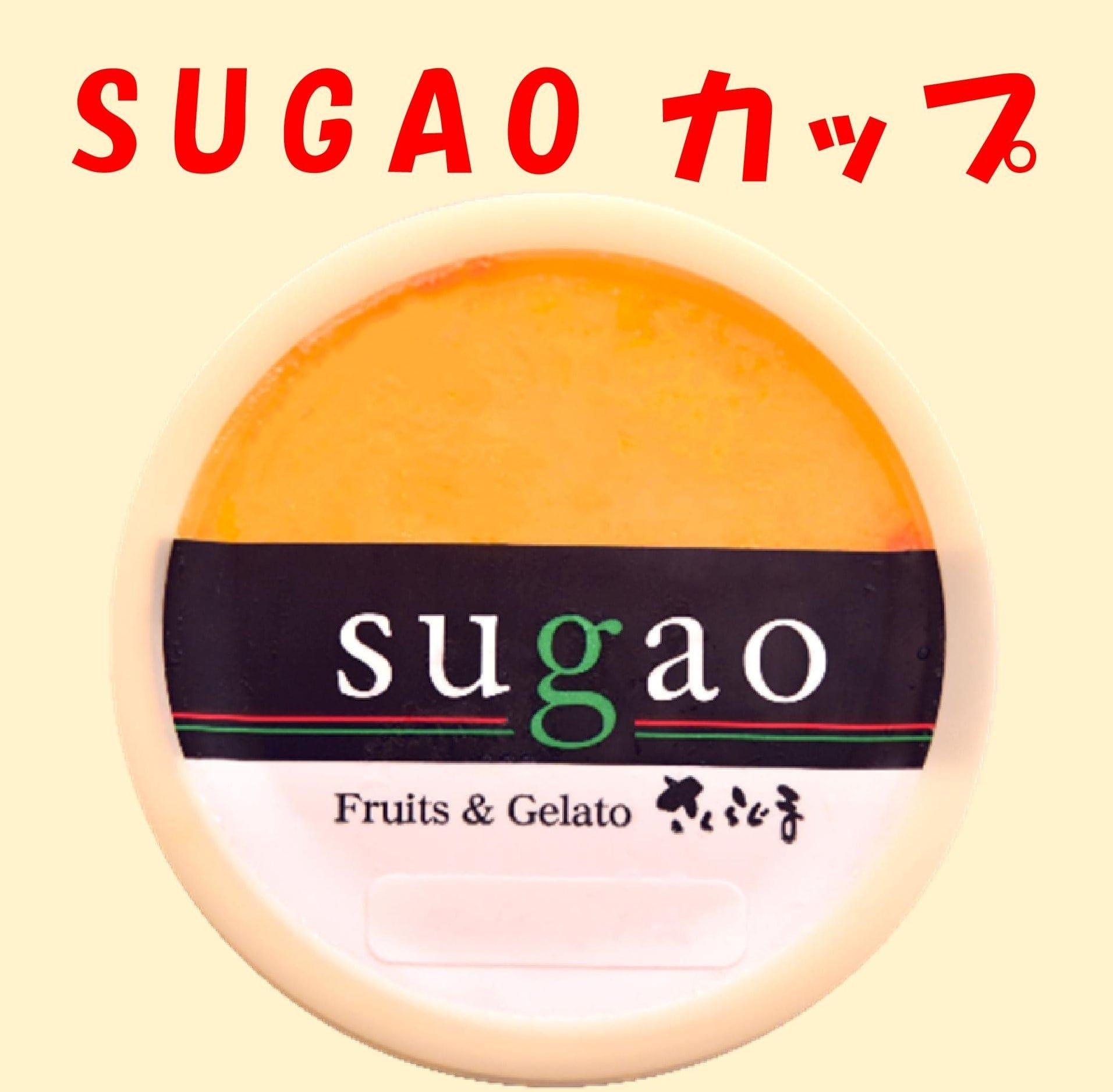 お好きなイタリアンジェラートSUGAOカップのイメージその1