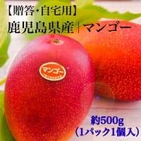 【特別価格】鹿児島県産|完熟マンゴー(1玉入)4Lサイズ
