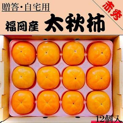 福岡産 太秋柿|12個