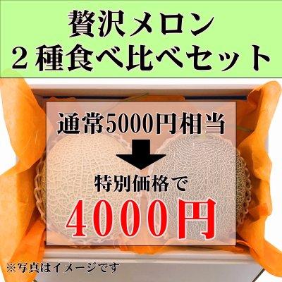 【今だけの特別価格】贅沢メロン2種食べ比べセット4000円(通常5000円相...