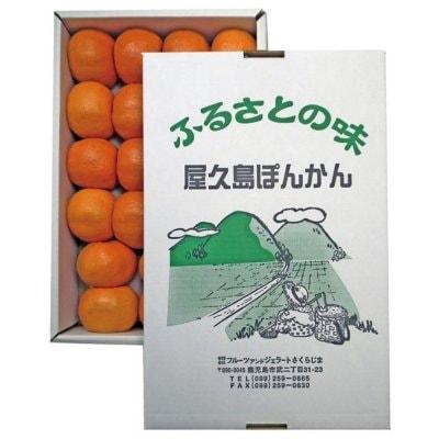 屋久島ぽんかん|3kg