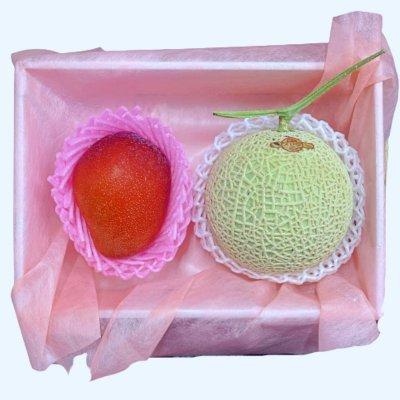 【母の日限定】超大玉の完熟マンゴー&マスクメロンのセット
