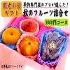 【敬老の日ギフト 早期予約割】秋のフルーツ詰合せ 3000円コース