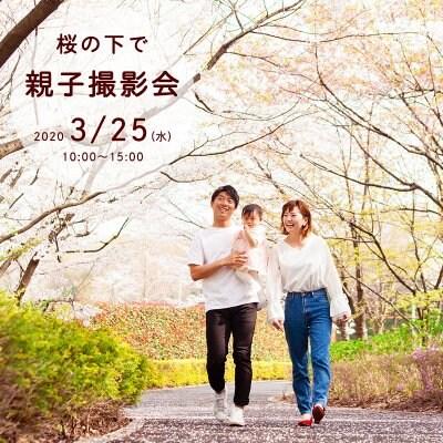 桜の下で親子撮影会*