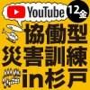【YouTube/1DAY】CDT2021オンライン参加チケット(12金のみ)