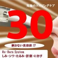 Re‐Born System 345ポイントチケット