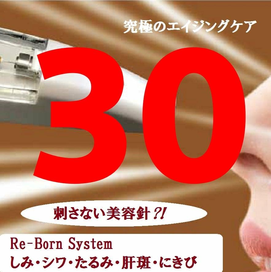 Re‐Born System 345ポイントチケットのイメージその1