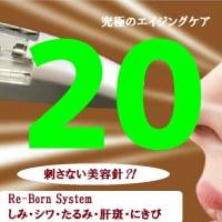 Re‐Born System 220ポイントチケット