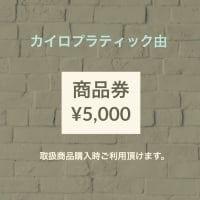 商品券 (5,000円)