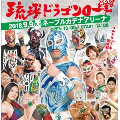 【DVD】バッファロー、沖縄襲来!2018.9.9琉球ドラゴンロード2018
