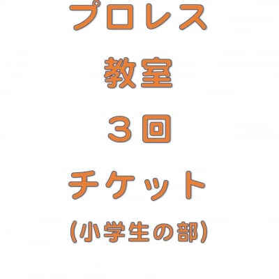 琉ドラプロレス教室【プロレス教室回数券】(小学生の部3回分)
